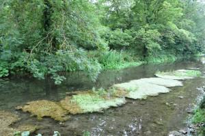 Cotswolds - Bibury - zattera