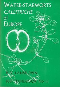 Callitriche europe