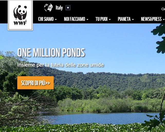 one million pond